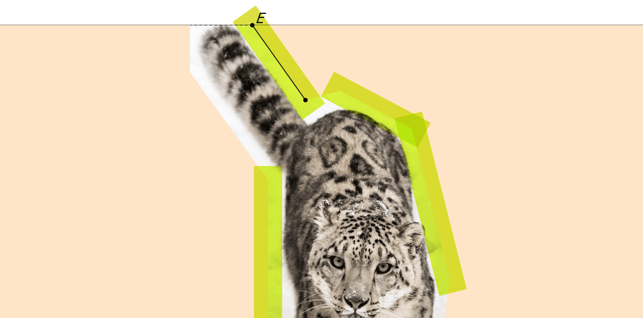 Screenshot showing the result of the latest demo and highlighting an edge which has an end on the top boundary of the original image.