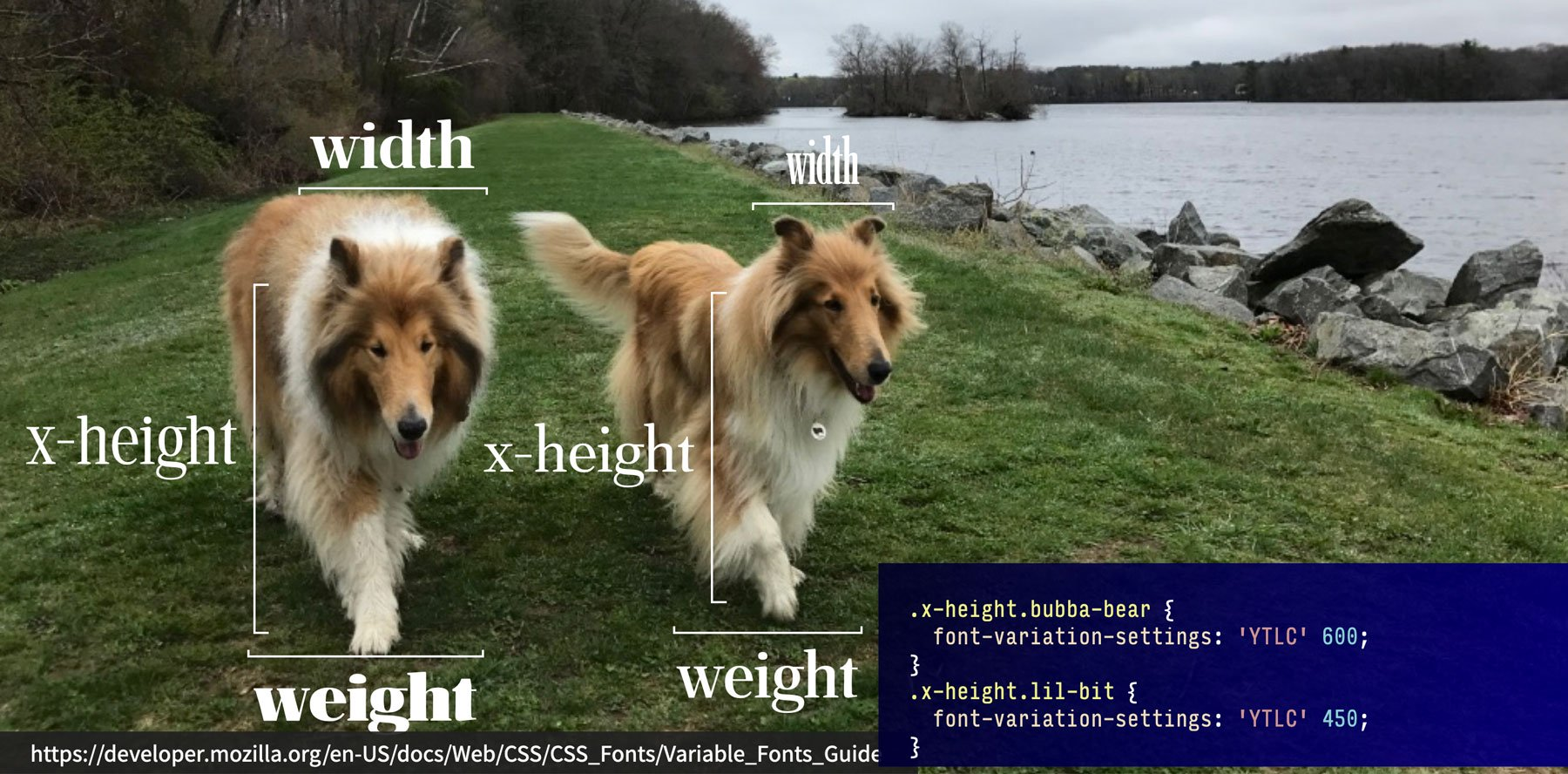 Image of Tristan and Tillie explaining variable fonts