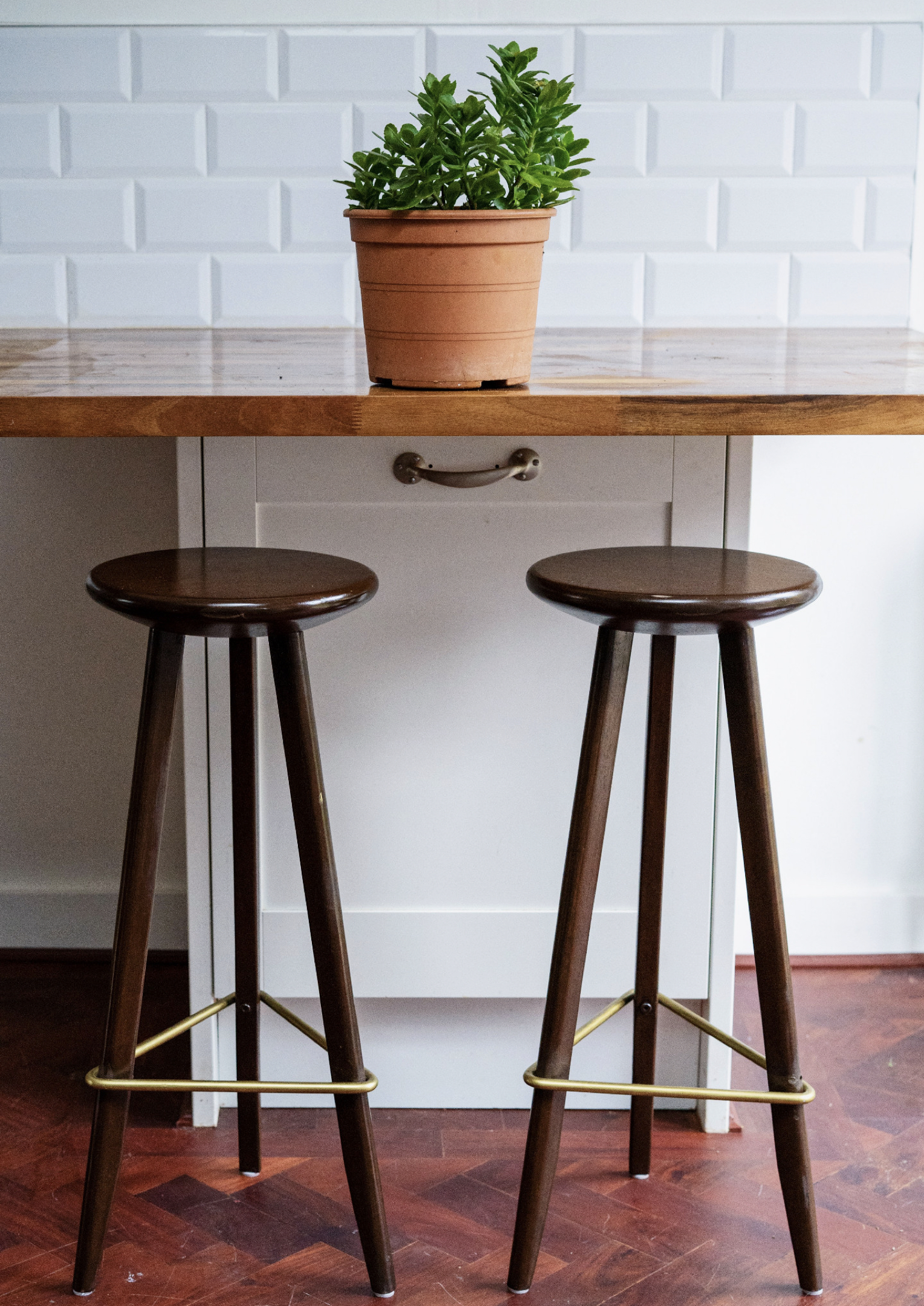 Two tall brown barstools with three legs and a brass frame under a natural wood countertop with a decorative green houseplant.